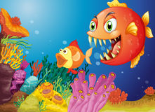 Colorful coral reefs with two fishes. Illustration of the colorful coral reefs with two fishes Royalty Free Stock Photo