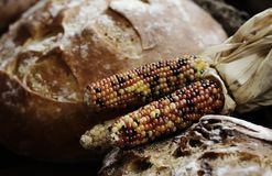 Colorful corn and bread beside stock photography
