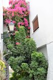 Colorful corner in Frigiliana - Spanish white village Andalusia. Beautiful and charming with its narrow streets and footpaths white village Frigiliana, close to Stock Photo