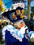 Colorful Costume Close-up Royalty Free Stock Image