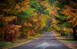 Colorful country roads in October. Stock Images