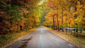 Colorful country roads in October. Stock Image