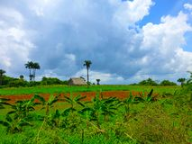 Colorful countryside in Cuba, farm, agriculture royalty free stock photos
