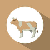Colorful cow animal design. Cow icon. Livestock animal life nature and fauna theme. Colorful design. Vector illustration Royalty Free Stock Image