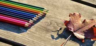 Colorful crayons and autumn leaf. Royalty Free Stock Photography