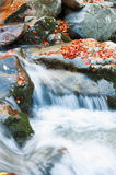 Colorful creek Royalty Free Stock Images