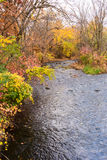 Colorful Creek. This is  the Minnehaha Creek in Minneapolis, Minnesota. This was taken during late fall Stock Images
