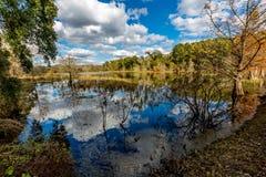 Colorful Creekfield Lake at Brazos Bend Texas Stock Image