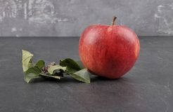 Apple with leaves on shale. Colorful and crisp image of apple with leaves on shale Royalty Free Stock Photo