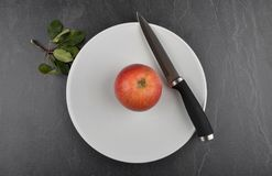 Apple on plate and shale. Colorful and crisp image of apple on plate and shale Stock Photography