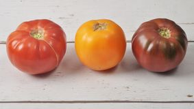 Tomatoes on weathered wood Royalty Free Stock Images