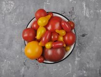 Variety of tomato cultivars in enamel bowl on concrete. Colorful and crisp image of variety of tomato cultivars in enamel bowl on concrete royalty free stock photos