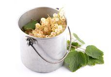 White currant with tin bucket on white. Colorful and crisp image of white currant with tin bucket on white Stock Photography