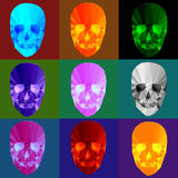 Colorful crystal skulls. On colorful backgrounds Stock Image