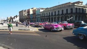 Colorful cuban cars on the way  in the center of Havana stock video footage
