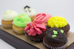 Colorful Cup Cake Royalty Free Stock Image