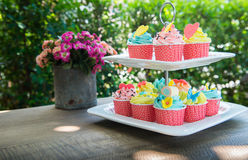 Colorful of cup cakes on shelf dish Stock Photos