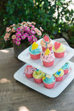 Colorful of cup cakes on shelf dish Stock Photo