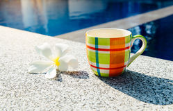 Colorful cup of coffee on the edge of pool Stock Photography