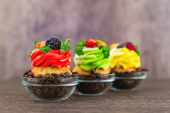 Colorful cupcakes with berries of coffee beans on a wooden background. Stock Images