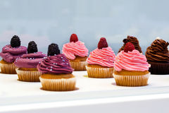 Colorful cupcakes with different Tastes. Small beautifull cakes on white table top. Royalty Free Stock Photo