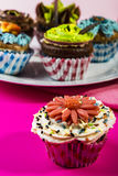Colorful cupcakes. Cupcakes on serving plate, background stock photo