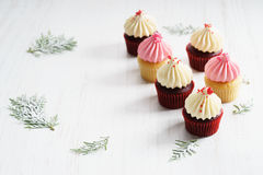 Colorful cupcakes on white wooden background Royalty Free Stock Photo