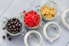 Colorful currant fruit jars wooden table Royalty Free Stock Images