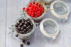 Colorful currant fruit jars wooden table Royalty Free Stock Image