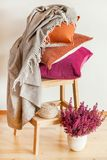Colorful cushions throw cozy home autumn mood flower royalty free stock photography