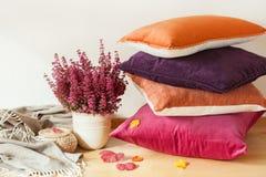 Colorful cushions throw cozy home autumn mood flower stock photos