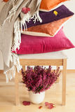 Colorful cushions throw cozy home autumn mood flower leaf stock photos
