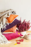 Colorful cushions throw cozy home autumn mood flower leaf stock images