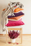 Colorful cushions throw cozy home autumn mood flower leaf royalty free stock image