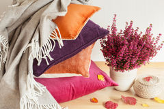 Colorful cushions throw cozy home autumn mood flower leaf stock photography