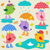 Colorful cute birds Stock Image