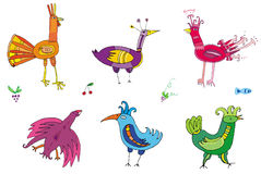 Colorful cute birds. Set of  vector, editable, isolated characters Royalty Free Stock Images