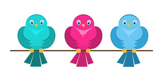 Colorful cute birds sitting on a branch Royalty Free Stock Image