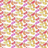 Colorful cute delicious tasty yummy ripe juicy lovely orange sum Royalty Free Stock Image