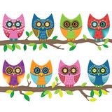 Colorful Cute Owl Royalty Free Stock Photography