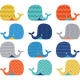 Colorful Cute Whale Collections. The vector for Colorful Cute Whale Collections Stock Photography