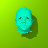 Colorful 3d head low poly illustration Royalty Free Stock Images