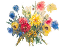 Colorful dahlias watercolor isolated. Yellow and red dahlias with blue flowers bouquet isolated. Watercolor painting, illustration, hand painted Royalty Free Stock Images