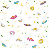 Colorful daisy field pattern vector background. Colorful daisy field pattern vector Stock Photo