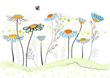 Colorful daisy field in spring time vector illustration Stock Photo