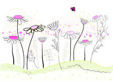Colorful daisy field in spring time vector illustration. Background Royalty Free Stock Image