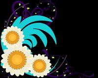 Colorful Daisy Floral Background Stock Image