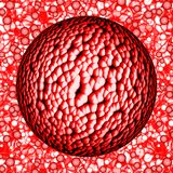 Colorful dangerous big bacterias or virus spheres in liquid Stock Images