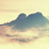 Colorful daybreak in a beautiful hilly landscape. Peaks of hills are sticking out from fog. The fog is swinging between trees. Stock Photo