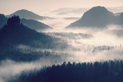 Colorful daybreak in a beautiful hilly landscape. Peaks of hills are sticking out from fog. The fog is swinging between trees. Royalty Free Stock Photography